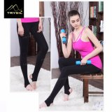 High Quality Ladies Yoga Pants for Women Fitness