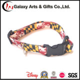 New Design Pet Leash with Dog′ S Collar