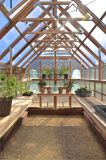 Customized Used Cold Aluminium Glass Sun Room with Tempered Glass for a Green House (TS-529)