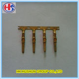 Hot Sale Connector Terminals with Brass (HS-DZ-0002)