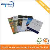 Digital Printing Pomotional Brochure (QYZ033)
