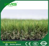 Landscping Artificial Plastic Grass Mat in Roll