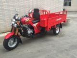 150cc Engine China Adult Cargo Tricycle with Damping Absorber and Tool Box Sy150zh-B8