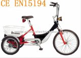 2017 New Powered Tricycle with 500W Motor and 48V / 20 Ah LiFePO4 Battery (SL-005)