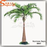 Ome Competitive Price Artificial Coconut Palm Tree (Fiber Glass)
