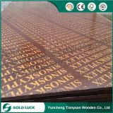 18mm Pressure Treated Brown Phenolic Film Faced Marine Plywood Sheets