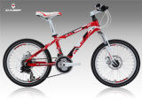 Hot Sales Children Bike/Alloy Bicycle in Stock (XC160)