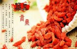 Super Fruit Goji Berry