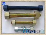 ASTM A194 Carbon Steel Stainless Steel Brass Thread Rod Bolt with Two Nuts