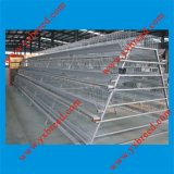 Chicken Layer Battery Cage