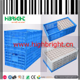 Egg Transportation Plastic Crate Egg Tray Pallet Box