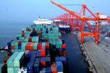 Consolidation LCL Shipping Forwarder From Shenzhen Guangzhou to Seattle, Washington