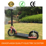 Ce Approved 2 Wheel Electric Scooter