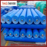 Blue and White Lamination PE Tarpaulin Packed in Rolls