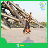 Okayrobot Model Toy, Toy Model Unicycle for Kids, Model Toys