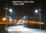 Solar Street Light (Lamp-10)