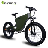 Big Power 14.5ah Fat Tire 48V 1000W Electric Bicycle
