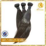 Xuchang Hair Extension 100% Peruvian Virgin Remy Human Hair Ension 100% Peruvian Virgin Remy Human Hair Grade 7A Silky Straight Weft (TFH-NL0046)