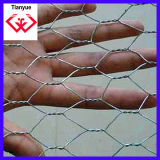 Galvanzied Hexagonal Wire Mesh/Chicken Mesh