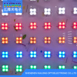 RGB Full Color LED Module with High Quaily Best Price