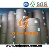 High Quality Light Coated Paper in Sheet and Roll