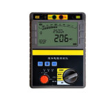2500V Digital Insulation Resistance Tester (TP2550)
