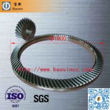 Oil Drilling Large Spiral Bevel Gear