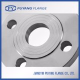 Forged Plate Flange ANSI Stainless Steel (PY0012)