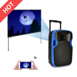 Best Factory Outdoor PA Active DJ Party Trolley Projection Loudspeaker