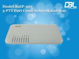 DBL RoIP gateway buildin GSM module intercom system (RoIP-302)