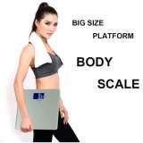 200kg Large Size Platform Body Weighing Scale