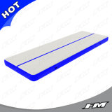 2X15m Blue Customized Gymnastics Trainng Inflatable Air Mat Tumble Track