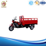 Th125 Gasoline Motor Tricycle for Cargo on Hot Sale
