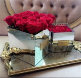 Perspex Mirrored Flower Box with Mirror 4 Sided Around