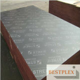 Full Poplar Core Film Faced Plywood, WBP Glue, Marine Plywood