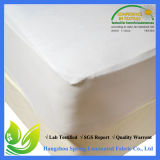 Queen Size Terry Anti Bacterial Waterproof Mattress Cover
