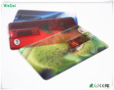 Transparent Credit Card USB Stick with Colorful Logo (WY-C11)