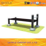 Outdoor Playground Gym Sit-up Fitness Equipment (QTL-3101)