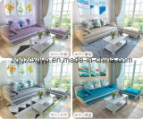 Small Apartmen/Living Room Sofa/New Style/High Quality Wood Frame Cx-Fsf03