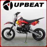 Upbeat Motorcycle Good Quality Dirt Bike Pit Bike Wholesale