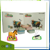 Ar Animal Eucational Cards for Kids