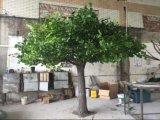 Artificial Ginkgo Tree Garden Decor Outdoor Use