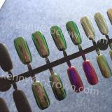 Nail Art Kit Mirror Effect Chameleon Pearl Pigment