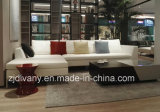 Italian Modern Furniture Living Room Coffee Table Tea Table (T-96)