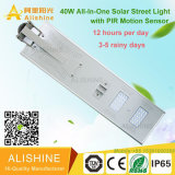 Factory Direct IP65 Bridgelux 40W Solar LED Street Lighting System Price