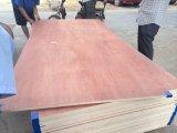 Poplar and Hardwood Bintangor Plywood From Linyi