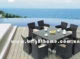 Outdoor Furniture / Garden Furniture / Rattan Furniture (BG-MT018)