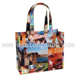 PVC Promotional Shopping Bag (JRQ010)