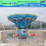 Amusement Park Machine, 12 Seats Merry-Go-Round, Flying Chair (HD-11005)
