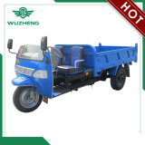 Chinese Open Cargo Diesel Motorized 3-Wheel Tricycle for Sale